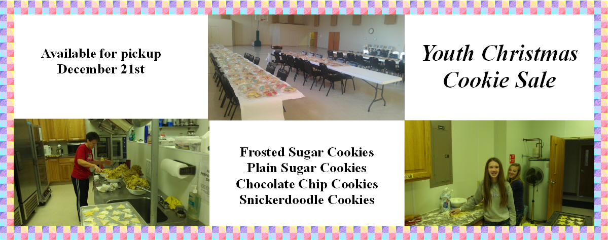 Youth Christmas Cookie Sale